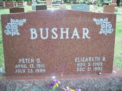 Peter O Bushar