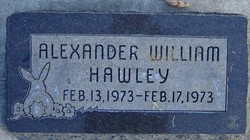 Alexander William Hawley