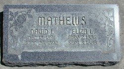 David Irving Mathews