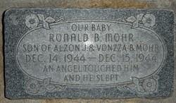 Ronald Bingham Mohr