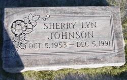 Sherry Lyn <I>Dopp</I> Johnson