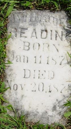 William Edwin Reading