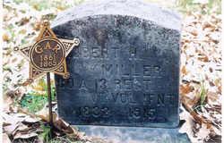 Robert H Miller