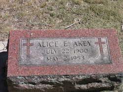 Alice E Akey
