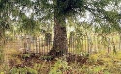 John C. Smith Cemetery