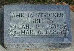 Amelia <I>Stricker</I> Tibbitts