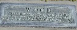 Phebe <I>Ricks</I> Wood