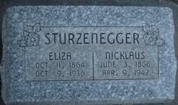 Eliza <I>Kuenzle</I> Sturzenegger