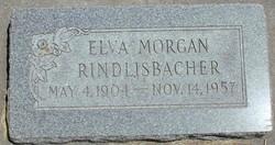 Elva <I>Morgan</I> Rindlisbacher