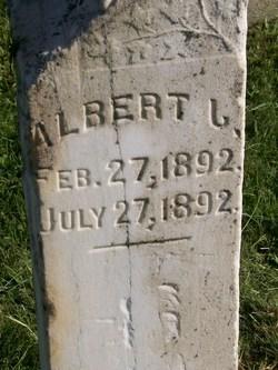 Albert J Devin