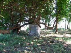 Morgan Walker Cemetery