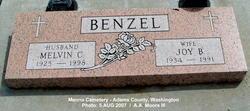 Joy Belle <I>Jantz</I> Benzel