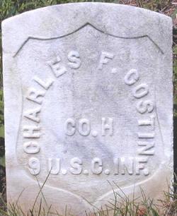 Charles F Costin