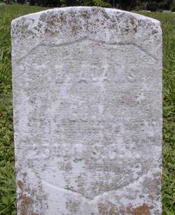 Pvt Thomas Henry Adams