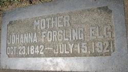 Johanna Sophia <I>Forsling</I> Elg