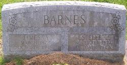 James Albert Barnes