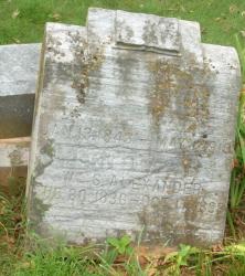 William S. Alexander