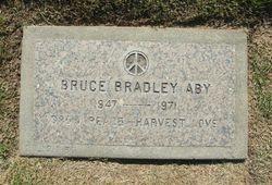 Bruce Bradley Aby