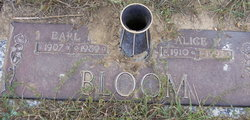 Kenneth Earl Bloom