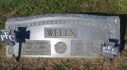 Charles Newton Wells