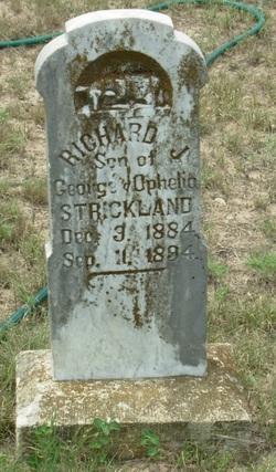 Richard J Strickland
