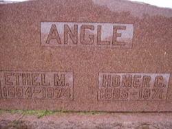 Homer Cecil Angle