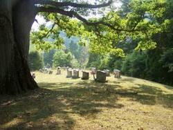 Ballard-Harvey Cemetery
