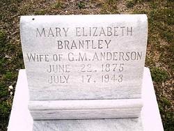 Mary Elizabeth <I>Brantley</I> Anderson