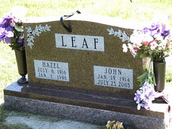 Hazel <I>White</I> Leaf