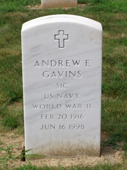 Andrew E Gavins