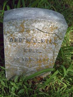Andrew J Wise