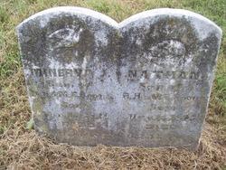 Minerva J. Boone