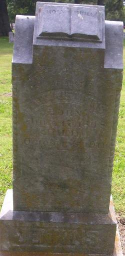 Thomas William Jenkins
