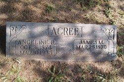 Angeline Rice <I>Allison</I> Acree