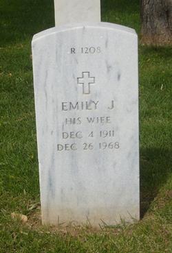Emily J Simmons