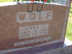 James A Wolf