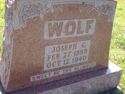 Joseph G Wolf