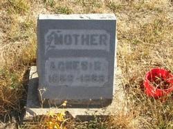 Agnes Belle <I>Foos</I> Crist