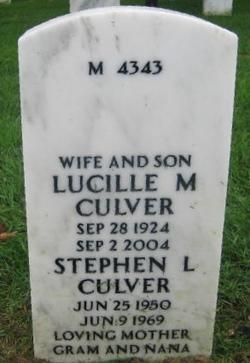 Stephen L Culver