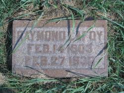 Raymond LaFoy Looney