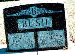 "Elizabeth Anne ""Eliza"" <I>Sincock</I> Bush"