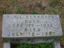 H. W. Louis Bergmann