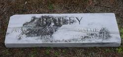 William L. Bailey