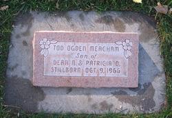 Tod Ogden Meacham