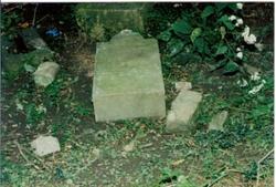Sauerbier-Burkhardt  Family Cemetery