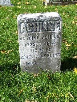 Antoine Ashline