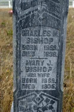 Charles M Bishop