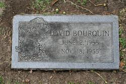 David Bourquin