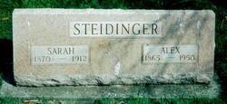 Alexander Steidinger