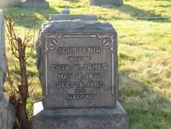 Agustenia H. <I>Willing</I> James